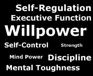 what is willpower
