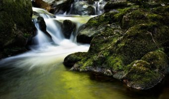 How to Live Your Life: On the Glory of Flow
